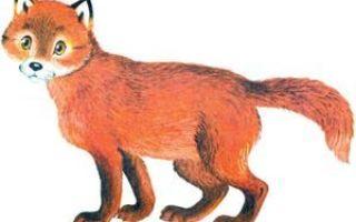 Лисица-хитрица