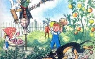 Бабушкин огород