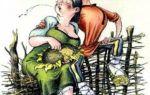 Беззаботная жена