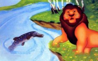 Лев, щука и человек