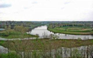 Вазуза и Волга