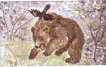 Дремучий Медведь