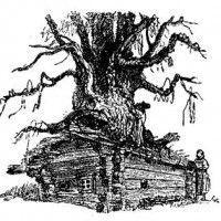 Вещий дуб