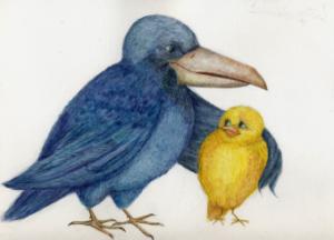Сказочка про Воронушку - чёрную головушку и жёлтую птичку Канарейку